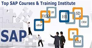 SAP Training Institutes in Bhopal, India