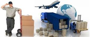 domestic air cargo agents in Indore, India